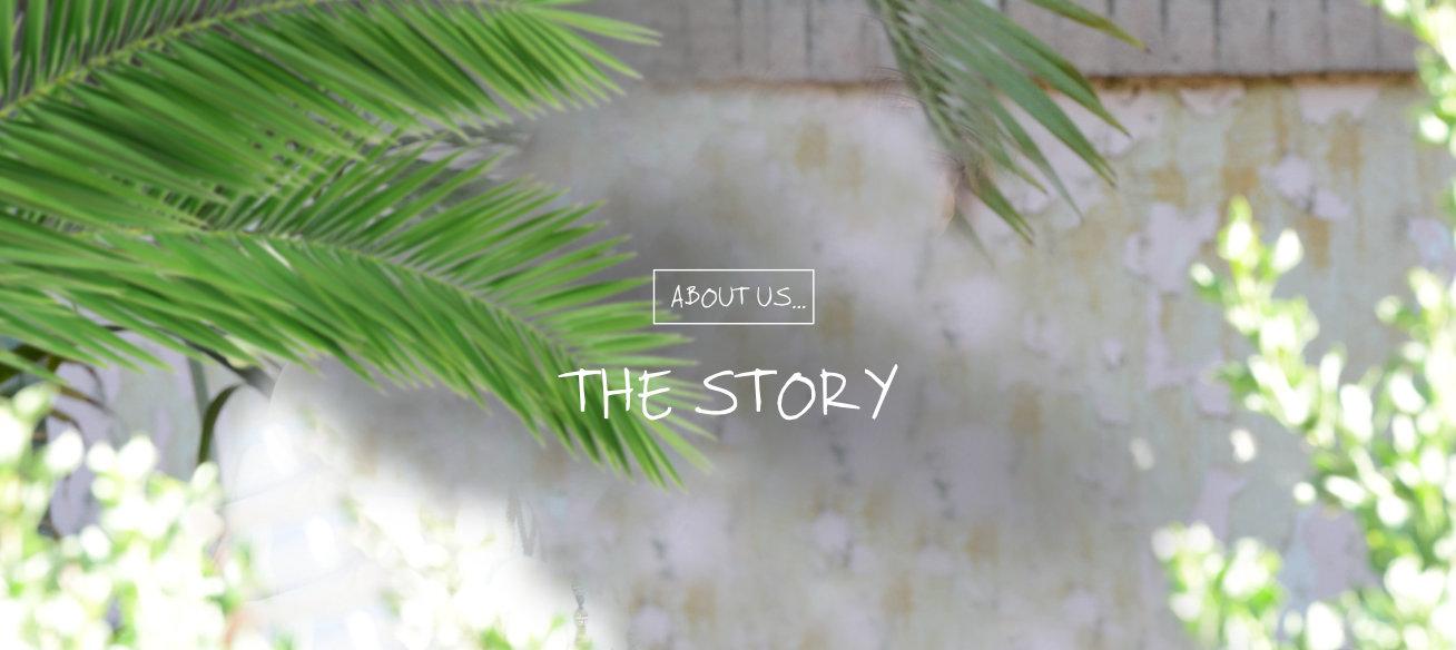 2020_02_17_story_01
